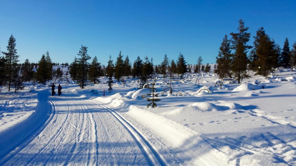 Urho Kekkonen national park winter