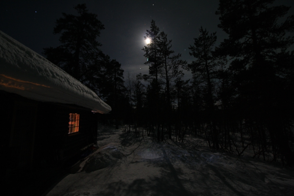 Urho Kekkonen national park winter